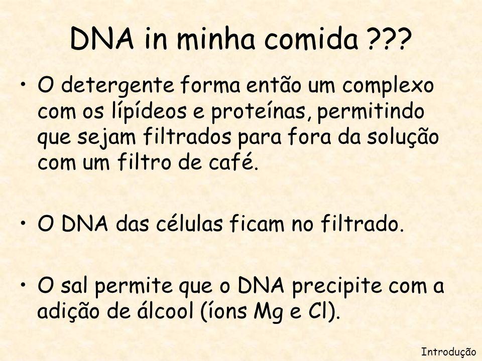DNA in minha comida ??.