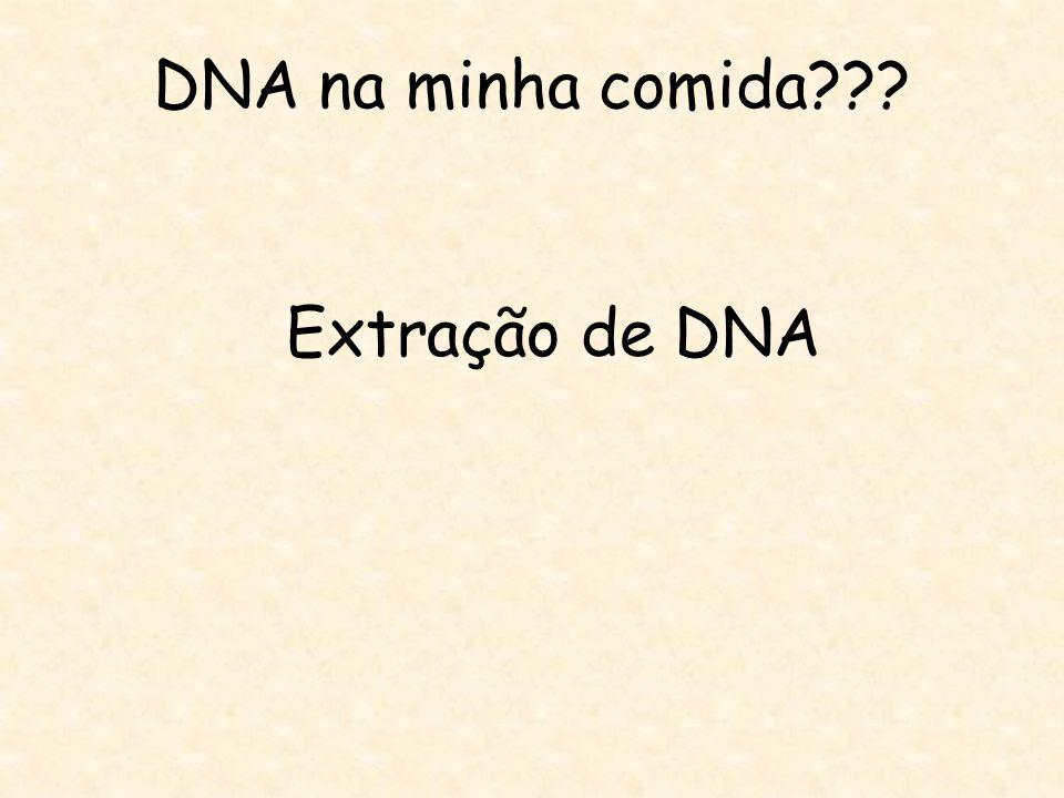 DNA na minha comida??? Extração de DNA