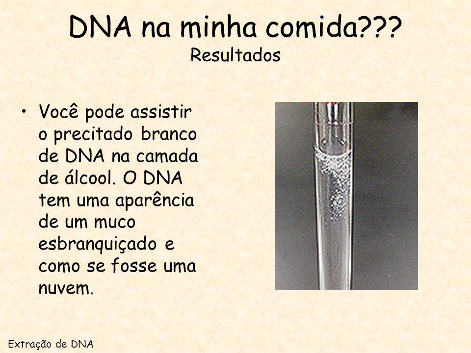 DNA na minha comida??.Resultados Você pode assistir o precitado branco de DNA na camada de álcool.