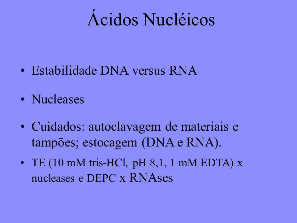 Ácidos Nucléicos Estabilidade DNA versus RNA Nucleases Cuidados: autoclavagem de materiais e tampões; estocagem (DNA e RNA).