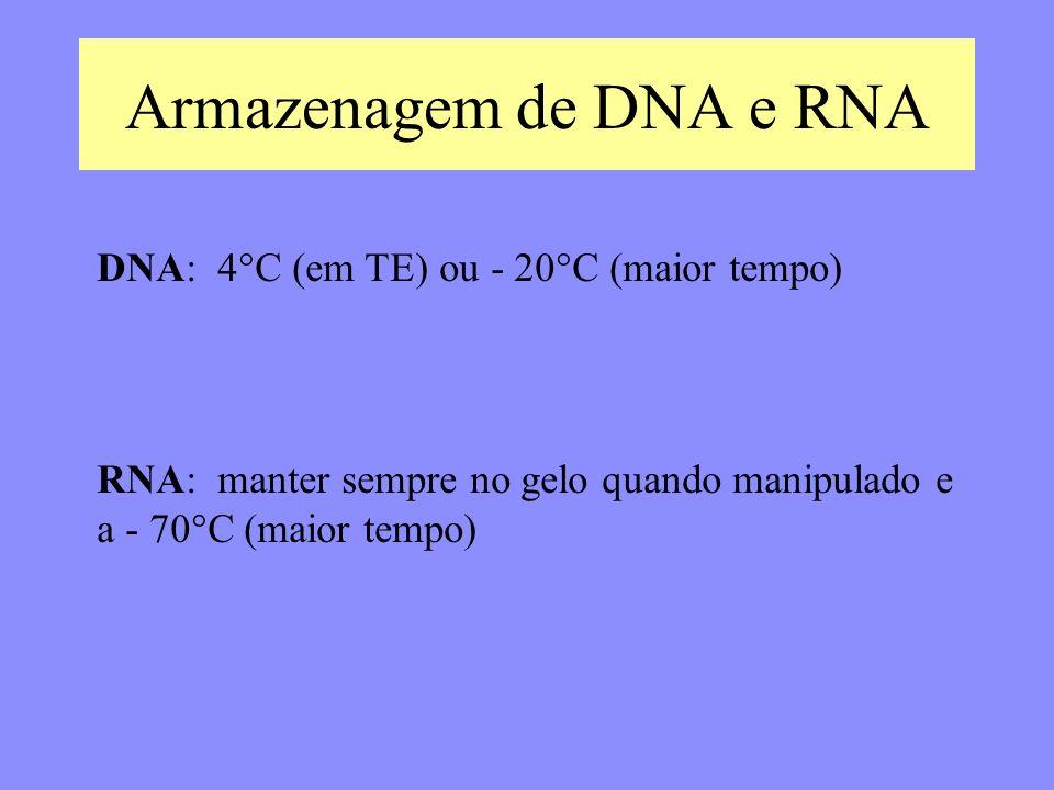 Armazenagem de DNA e RNA DNA: 4°C (em TE) ou - 20°C (maior tempo) RNA: manter sempre no gelo quando manipulado e a - 70°C (maior tempo)