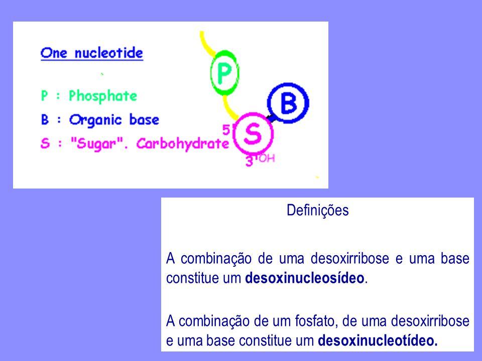 http://www.blc.arizona.edu/Molecular_Graphics/DNA_Structure/Purines_BS_Labels.GIF Adenina e Guanina são Purinas.