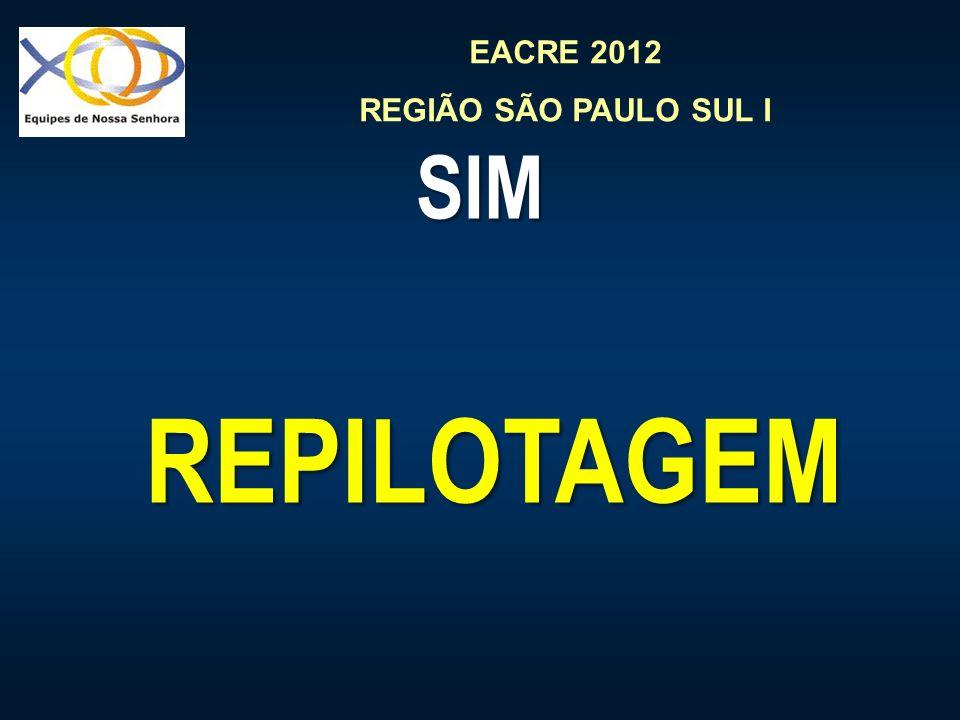 EACRE 2012 REGIÃO SÃO PAULO SUL I SIM REPILOTAGEM REPILOTAGEM