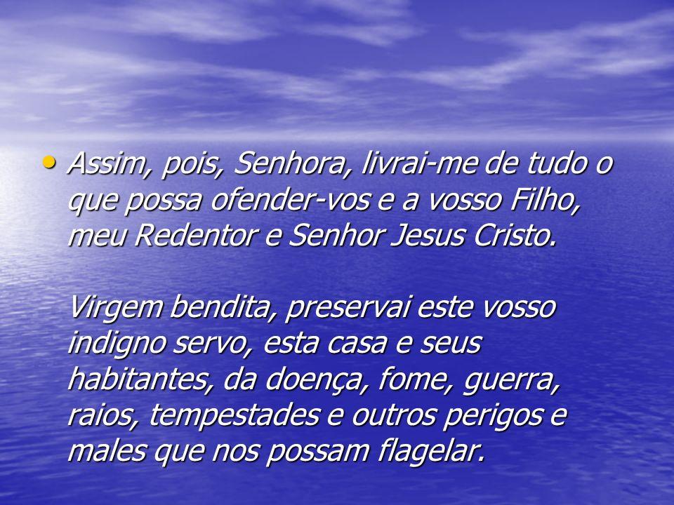 Assim, pois, Senhora, livrai-me de tudo o que possa ofender-vos e a vosso Filho, meu Redentor e Senhor Jesus Cristo. Virgem bendita, preservai este vo