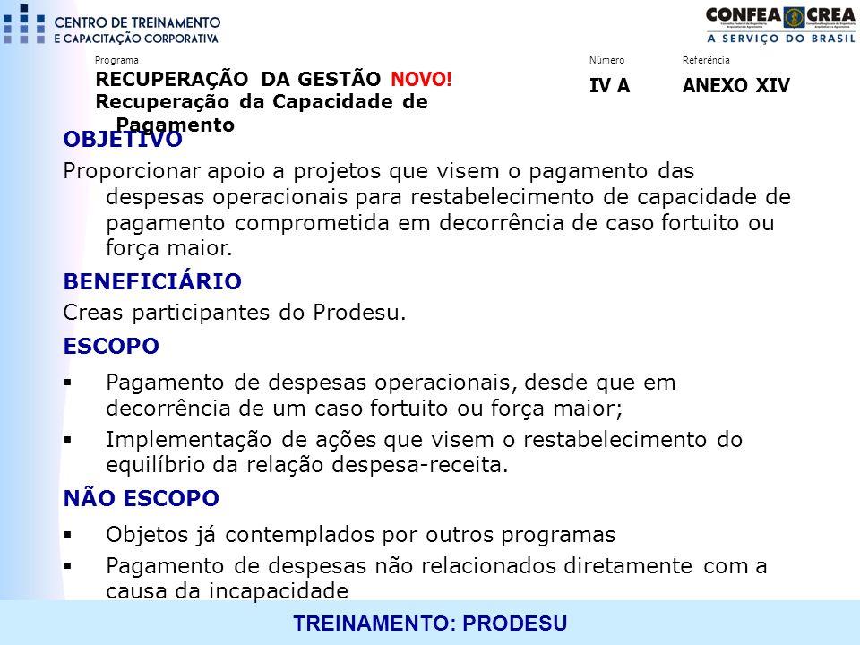 TREINAMENTO: PRODESU OBJETIVO Proporcionar apoio a projetos que visem o pagamento das despesas operacionais para restabelecimento de capacidade de pag