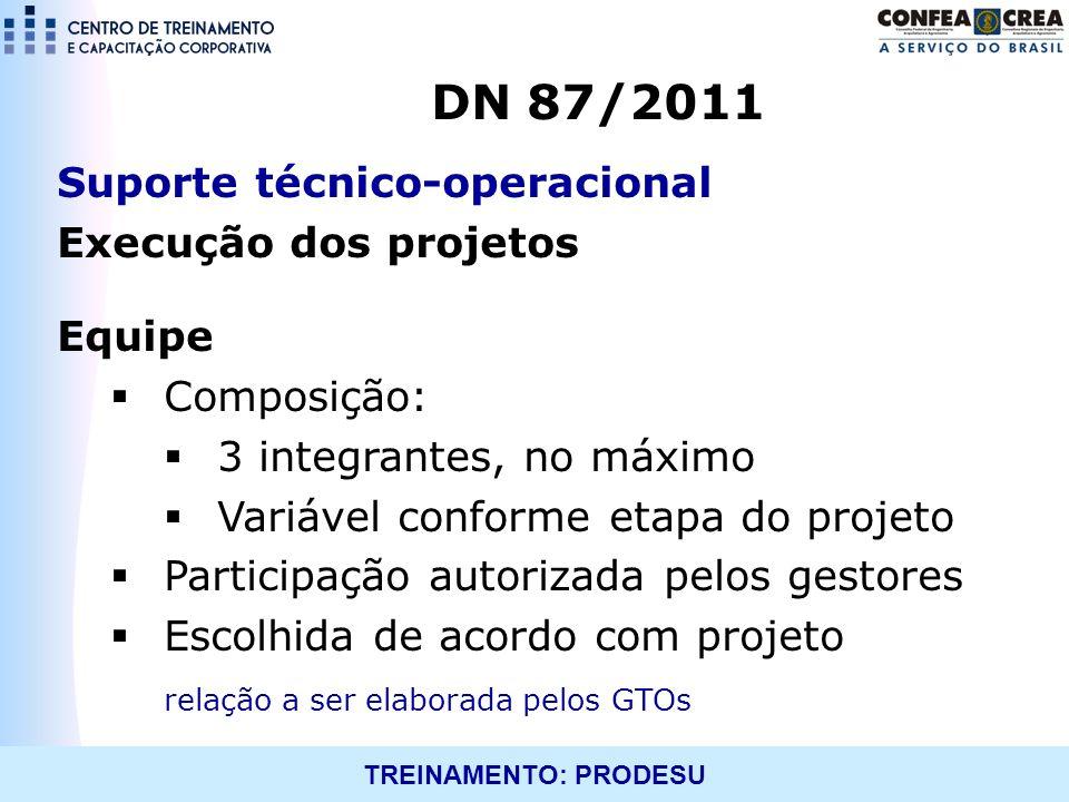 TREINAMENTO: PRODESU Suporte técnico-operacional Execução dos projetos Equipe Composição: 3 integrantes, no máximo Variável conforme etapa do projeto