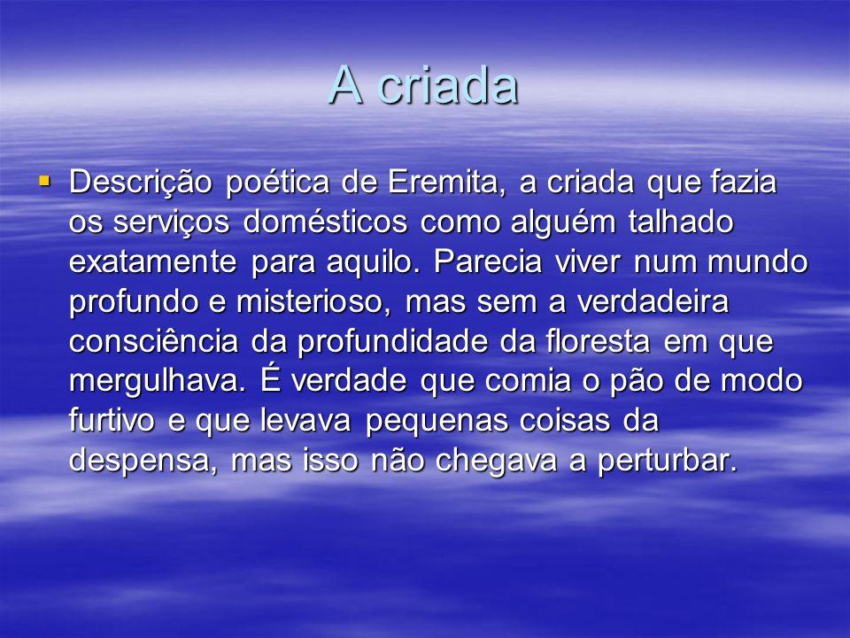 A criada Descrição poética de Eremita, a criada que fazia os serviços domésticos como alguém talhado exatamente para aquilo. Parecia viver num mundo p