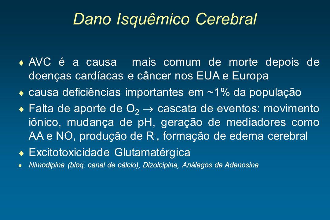 Dano Isquêmico Cerebral AVC é a causa mais comum de morte depois de doenças cardíacas e câncer nos EUA e Europa causa deficiências importantes em ~1%