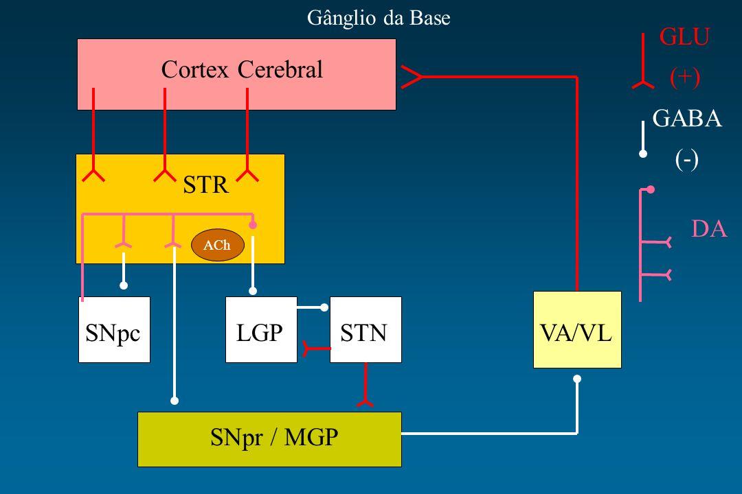 Cortex Cerebral STR SNpcLGPSTNVA/VL SNpr / MGP ACh GLU (+) GABA (-) DA Gânglio da Base