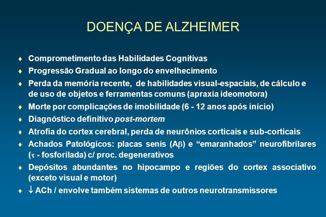 DOENÇA DE ALZHEIMER Comprometimento das Habilidades Cognitivas Progressão Gradual ao longo do envelhecimento Perda da memória recente, de habilidades