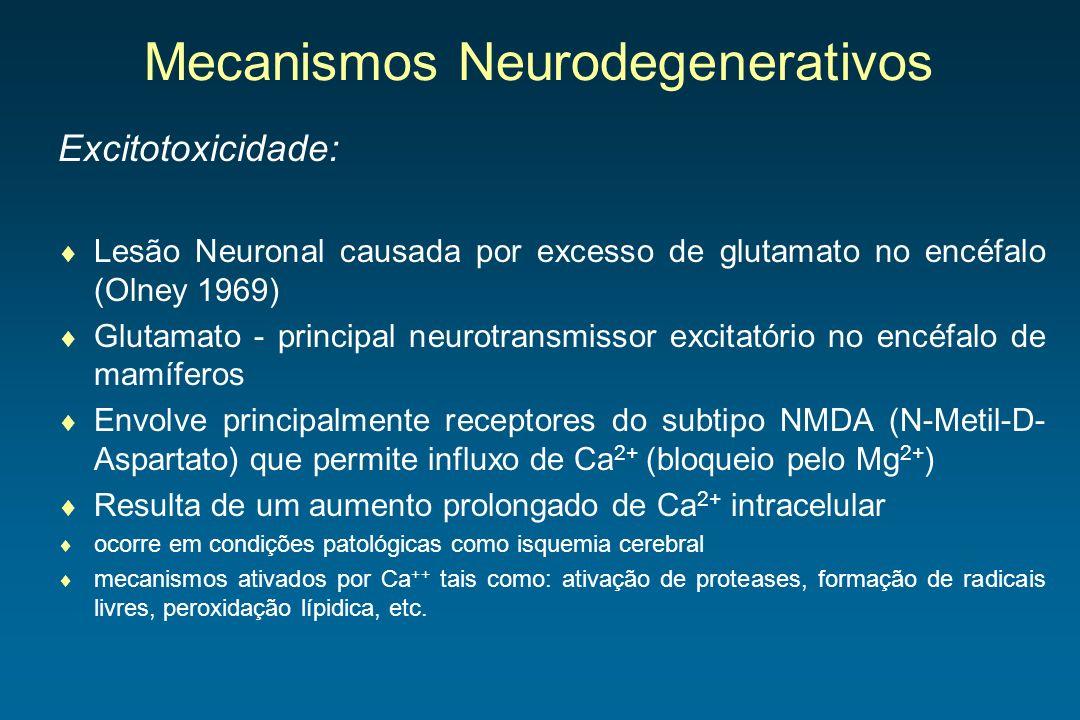 Mecanismos Neurodegenerativos Excitotoxicidade: Lesão Neuronal causada por excesso de glutamato no encéfalo (Olney 1969) Glutamato - principal neurotr