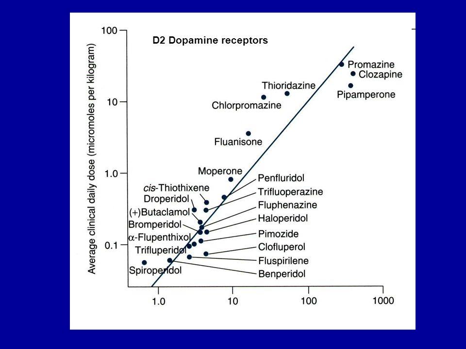 D2 Dopamine receptors