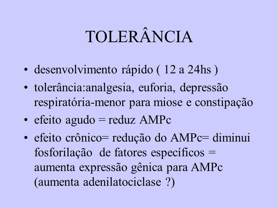 TOLERÂNCIA desenvolvimento rápido ( 12 a 24hs ) tolerância:analgesia, euforia, depressão respiratória-menor para miose e constipação efeito agudo = re