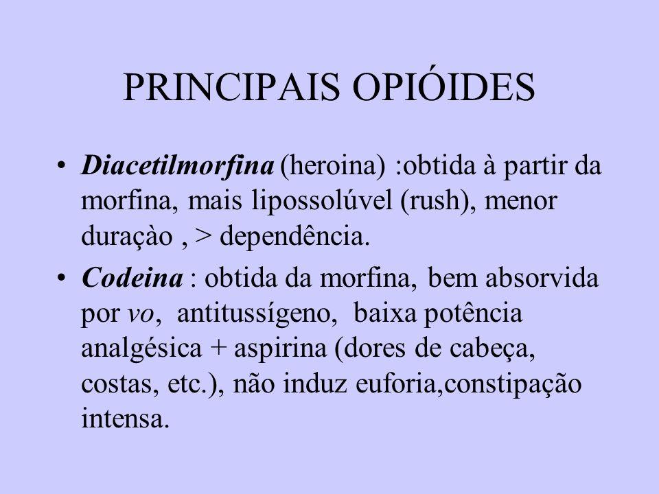 PRINCIPAIS OPIÓIDES Diacetilmorfina (heroina) :obtida à partir da morfina, mais lipossolúvel (rush), menor duraçào, > dependência. Codeina : obtida da