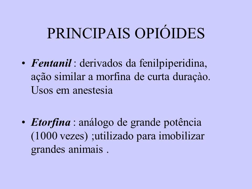 PRINCIPAIS OPIÓIDES Fentanil : derivados da fenilpiperidina, ação similar a morfina de curta duraçào. Usos em anestesia Etorfina : análogo de grande p