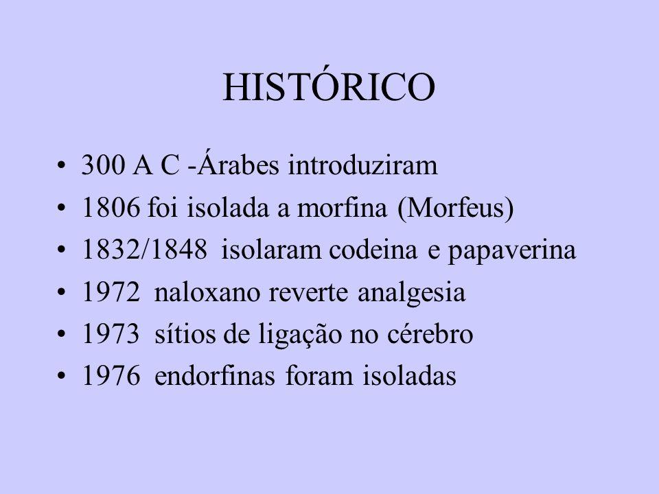 HISTÓRICO 300 A C -Árabes introduziram 1806 foi isolada a morfina (Morfeus) 1832/1848 isolaram codeina e papaverina 1972 naloxano reverte analgesia 19