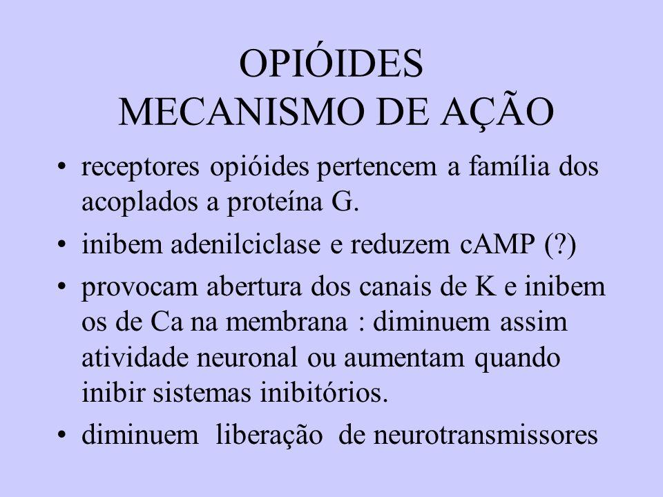 AÇÕES FARMACOLÓGICAS (ex.: morfina) analgesia: dores agudas e crônicas,exceto as neuropaticas (ex: neuralgia do trigêmio) efeito antinoceptivo e no componente afetivo ( sistema limbico : euforia ) nalorfina e pentazocina possuem efeito antinoceptivo porém pouco psicológico