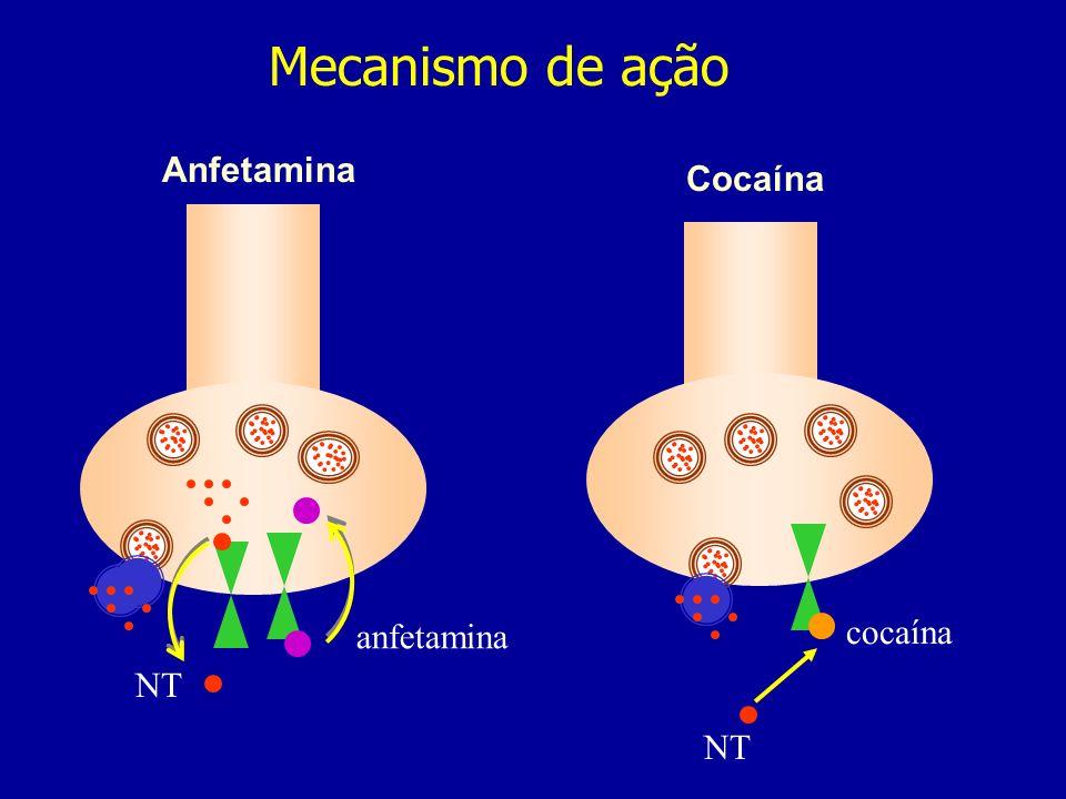 Mecanismo de ação NT cocaína anfetamina NT Anfetamina Cocaína