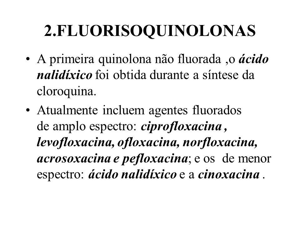 2.FLUORISOQUINOLONAS A primeira quinolona não fluorada,o ácido nalidíxico foi obtida durante a síntese da cloroquina. Atualmente incluem agentes fluor