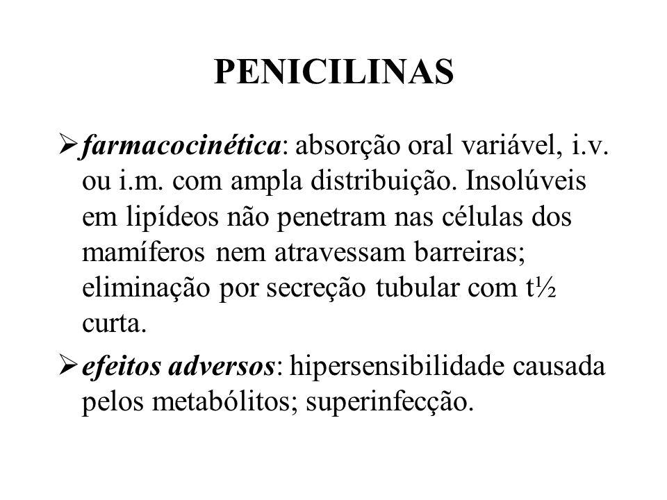 PENICILINAS farmacocinética: absorção oral variável, i.v. ou i.m. com ampla distribuição. Insolúveis em lipídeos não penetram nas células dos mamífero