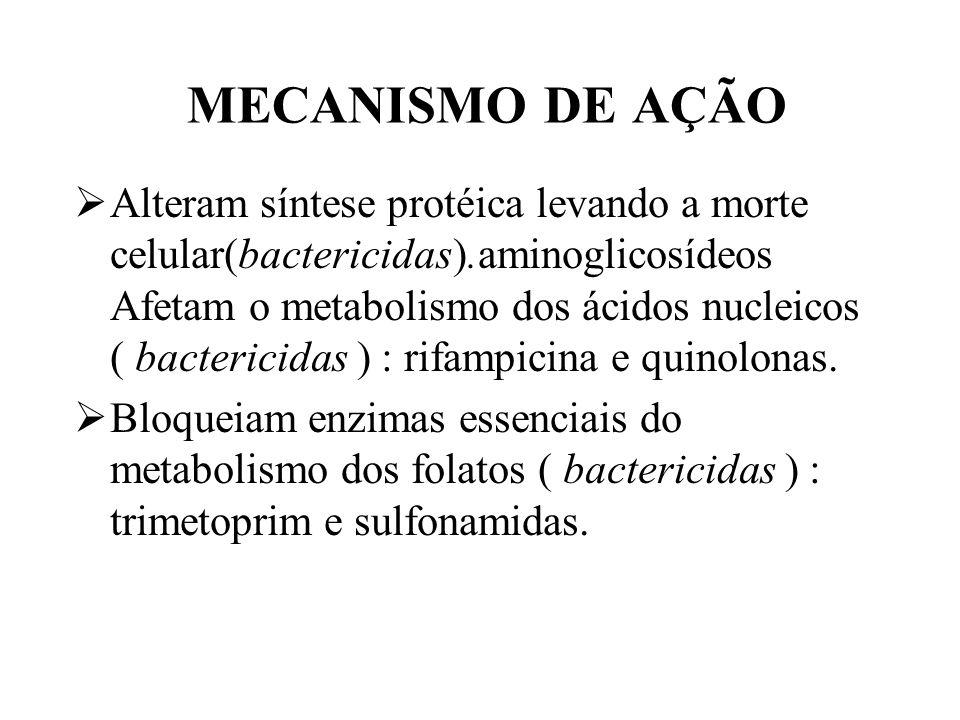 MECANISMO DE AÇÃO Alteram síntese protéica levando a morte celular(bactericidas).aminoglicosídeos Afetam o metabolismo dos ácidos nucleicos ( bacteric