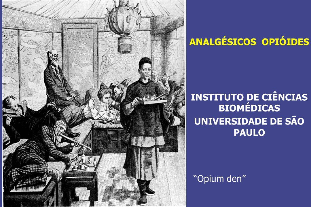 INSTITUTO DE CIÊNCIAS BIOMÉDICAS UNIVERSIDADE DE SÃO PAULO ANALGÉSICOS OPIÓIDES Opium den