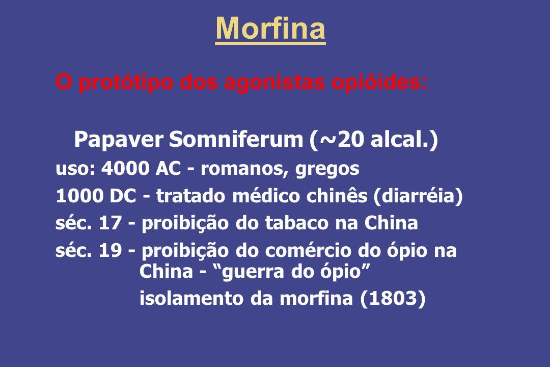 Morfina O protótipo dos agonistas opióides: Alcalóide das sementes da papoula - Papaver Somniferum (~20 alcal.) uso: 4000 AC - romanos, gregos 1000 DC