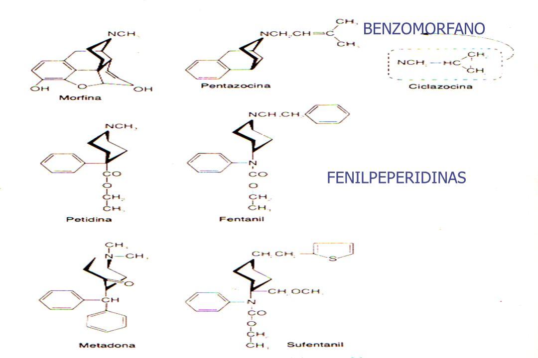 BENZOMORFANO FENILPEPERIDINAS