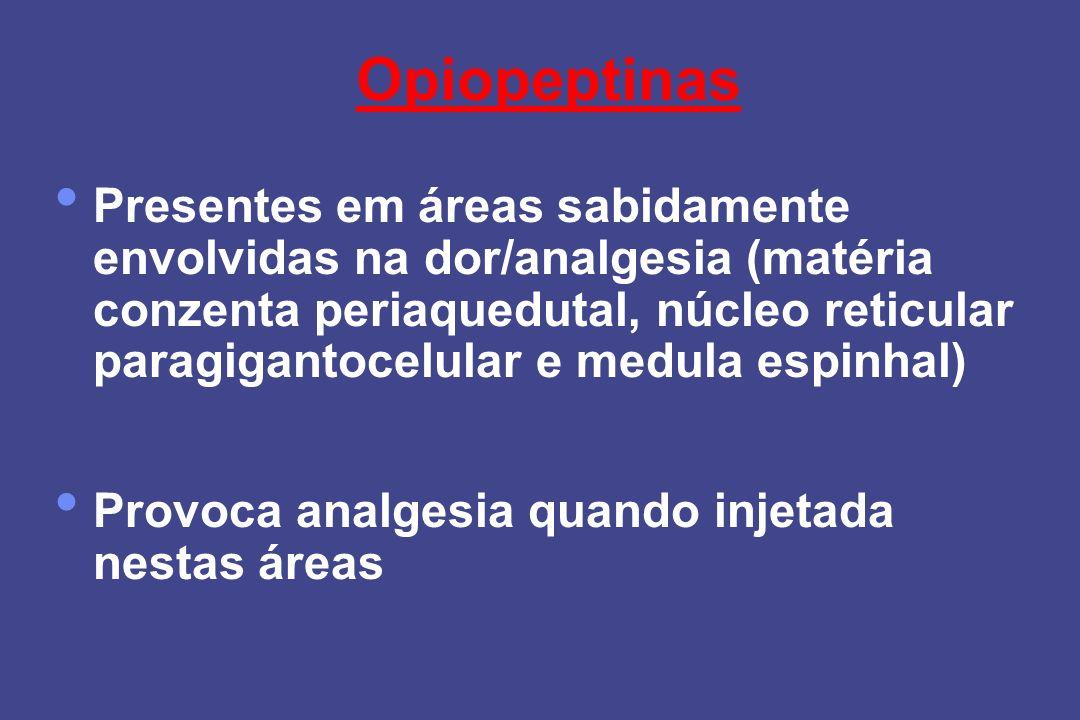 Opiopeptinas Presentes em áreas sabidamente envolvidas na dor/analgesia (matéria conzenta periaquedutal, núcleo reticular paragigantocelular e medula