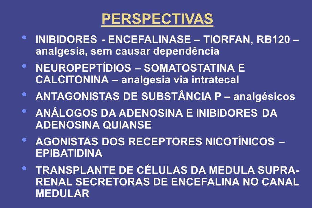 PERSPECTIVAS INIBIDORES - ENCEFALINASE – TIORFAN, RB120 – analgesia, sem causar dependência NEUROPEPTÍDIOS – SOMATOSTATINA E CALCITONINA – analgesia v