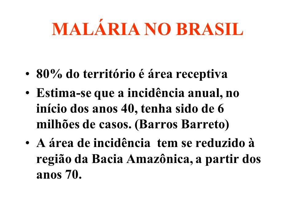 Registro de casos de malária - Amazônia Legal Período de 1976 a 2002* Fonte: GT-Malária/ASDCE\CENEPI/FUNASA *Dados de 2002 sujeitos a alterações FUNASA