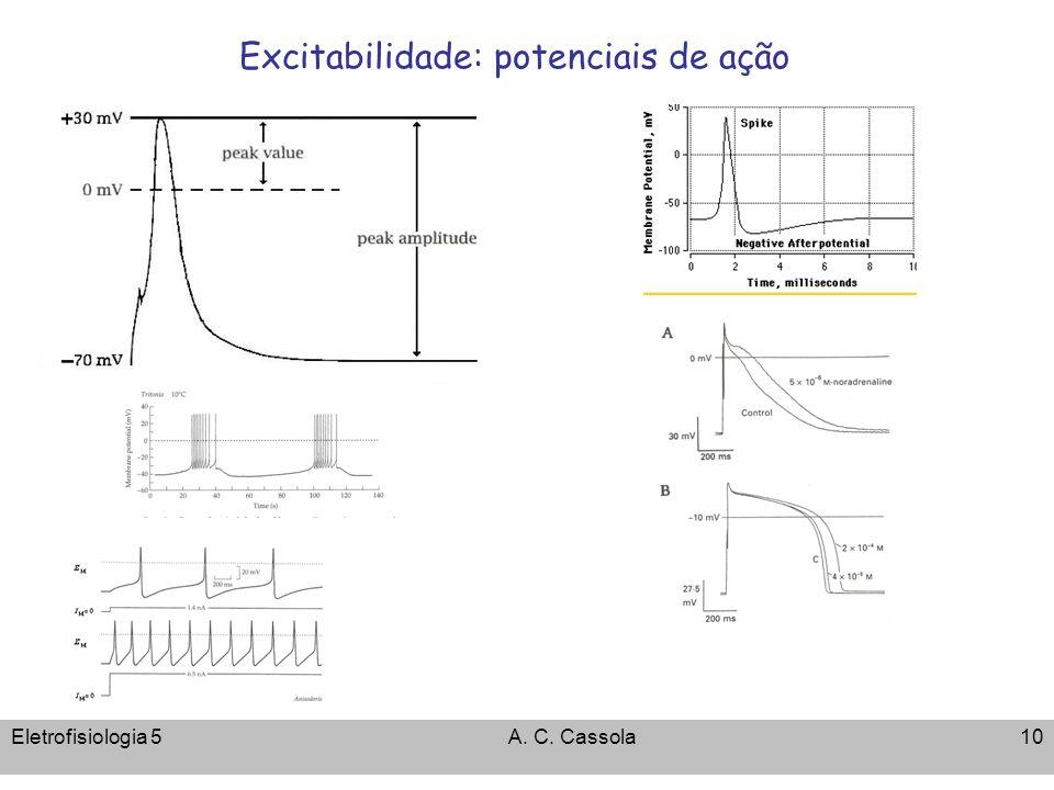 Eletrofisiologia 5A. C. Cassola10 Excitabilidade: potenciais de ação