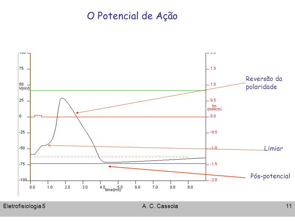 Eletrofisiologia 5A. C. Cassola11 O Potencial de Ação Reversão da polaridade Limiar Pós-potencial