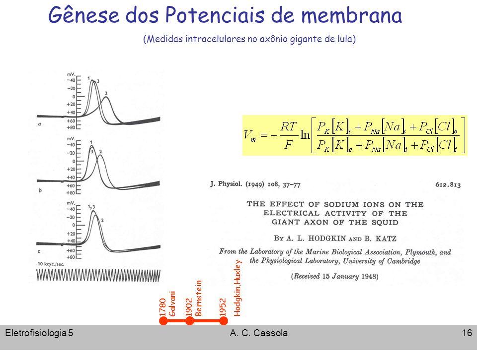 Eletrofisiologia 5A. C. Cassola16 Gênese dos Potenciais de membrana (Medidas intracelulares no axônio gigante de lula) 1902 Bernstein 1780 Galvani 195