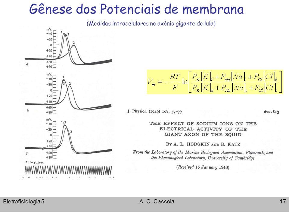 Eletrofisiologia 5A. C. Cassola17 Gênese dos Potenciais de membrana (Medidas intracelulares no axônio gigante de lula)