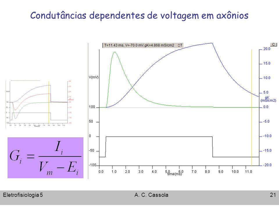 Eletrofisiologia 5A. C. Cassola21 Condutâncias dependentes de voltagem em axônios