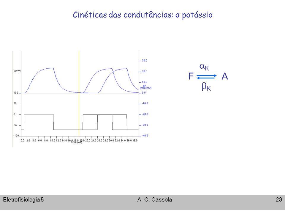 Eletrofisiologia 5A. C. Cassola23 Cinéticas das condutâncias: a potássio K F K A