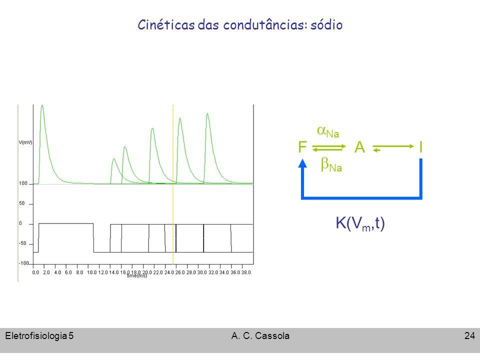 Eletrofisiologia 5A. C. Cassola24 Cinéticas das condutâncias: sódio Na F AI K(V m,t)