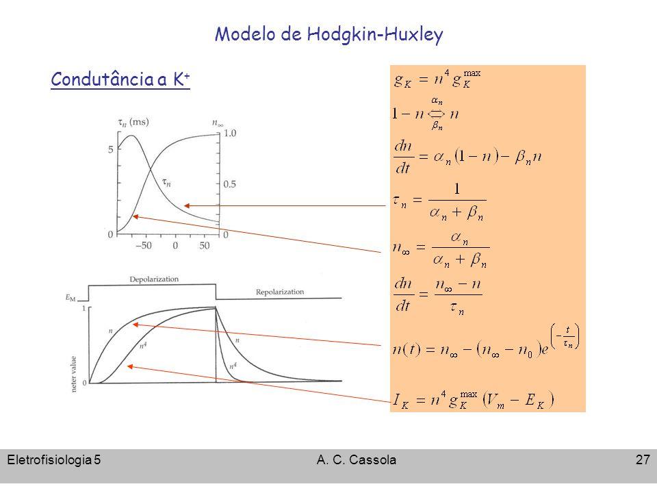 Eletrofisiologia 5A. C. Cassola27 Modelo de Hodgkin-Huxley Condutância a K +