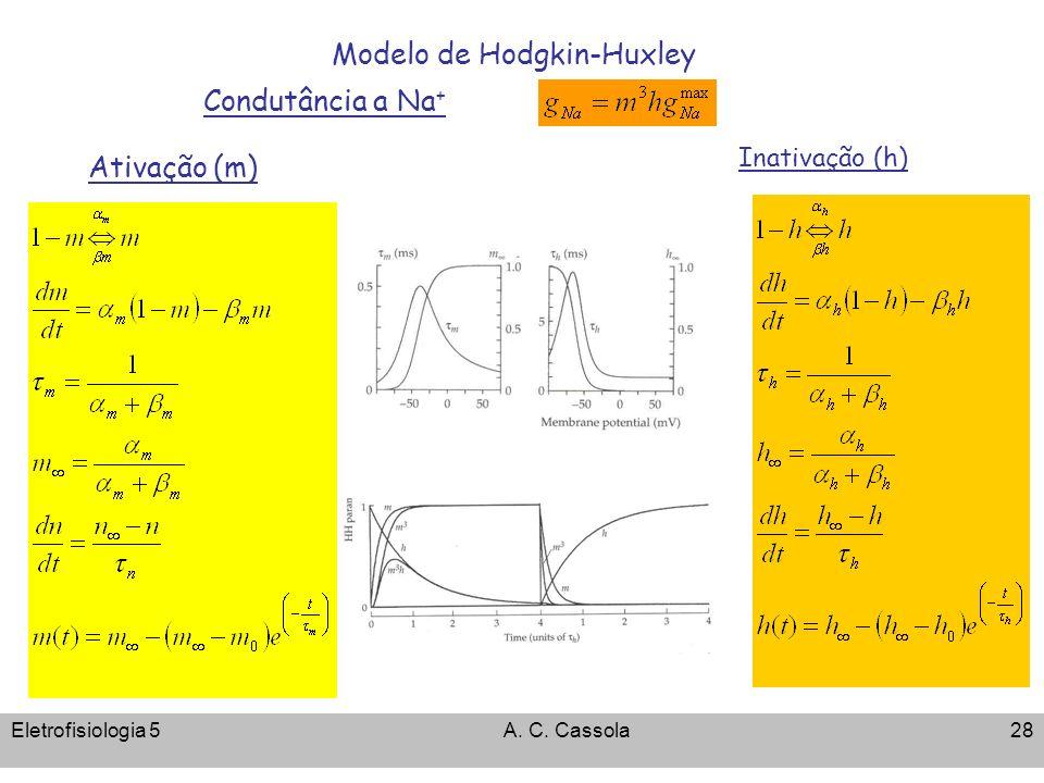 Eletrofisiologia 5A. C. Cassola28 Modelo de Hodgkin-Huxley Condutância a Na + Ativação (m) Inativação (h)