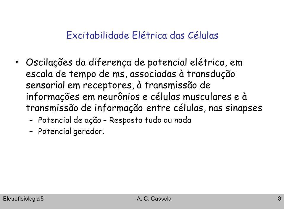 Eletrofisiologia 5A. C. Cassola3 Excitabilidade Elétrica das Células Oscilações da diferença de potencial elétrico, em escala de tempo de ms, associad