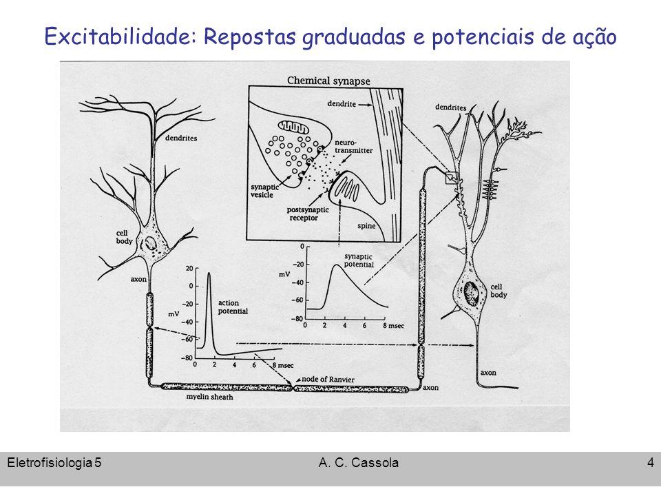Eletrofisiologia 5A. C. Cassola25 INav 0 1 nA 1 ms 0 mV -110 mV
