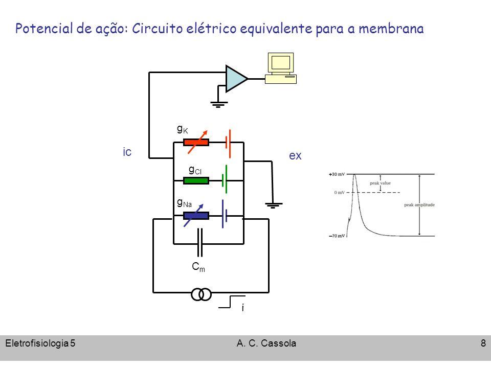 Eletrofisiologia 5A. C. Cassola8 Potencial de ação: Circuito elétrico equivalente para a membrana CmCm g Cl gKgK ic ex g Na i