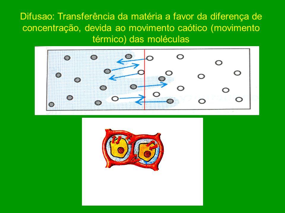 Transporte de Substâncias nas soluções Convecção: Movimento da solução, em volume, promovido por diferença de pressão osmótica ou hidrostática.
