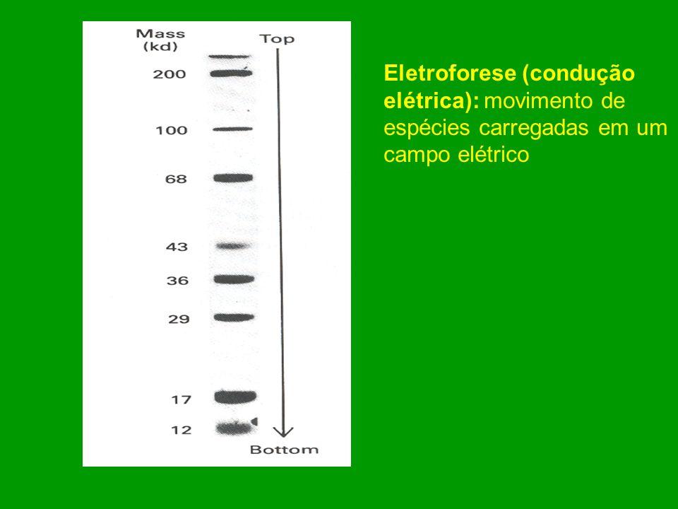 Difusao: Transferência da matéria a favor da diferença de concentração, devida ao movimento caótico (movimento térmico) das moléculas