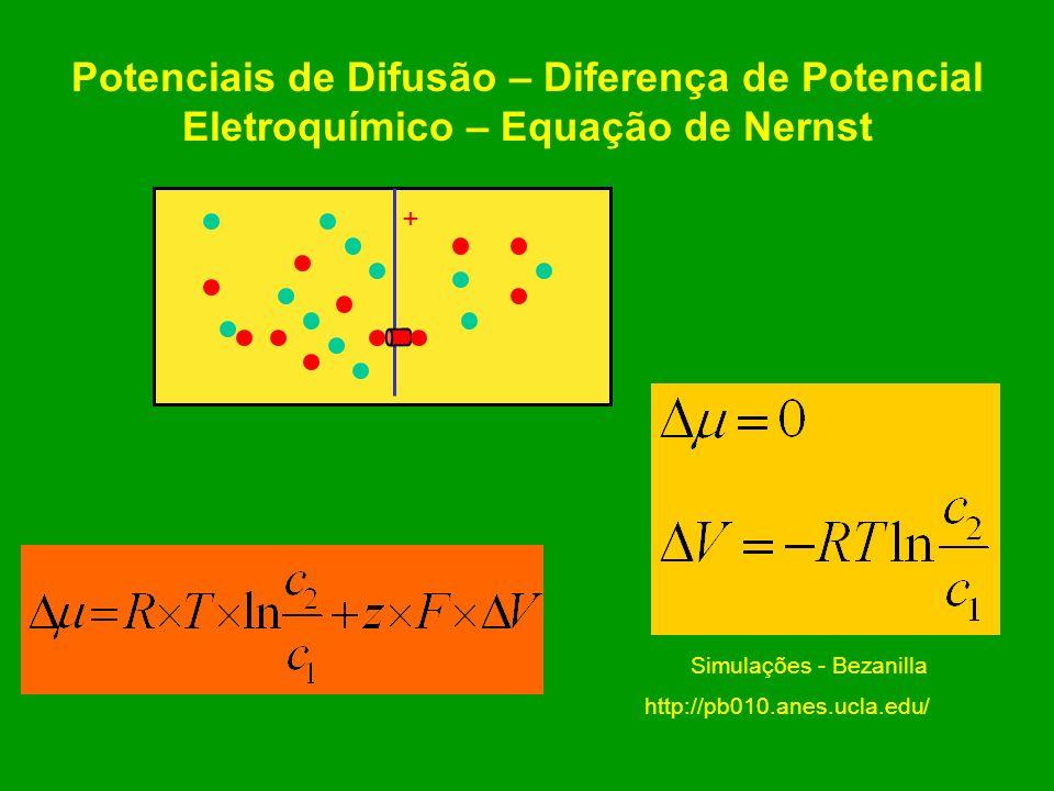 Eletrodifusão na membrana celular plasmática: fenômenos de excitabilidade
