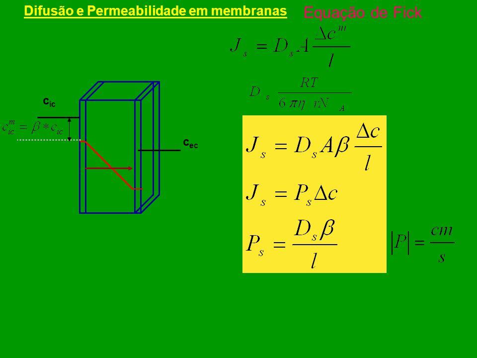 Potenciais de Difusão – Diferença de Potencial Eletroquímico – Equação de Nernst + Simulações - Bezanilla http://pb010.anes.ucla.edu/