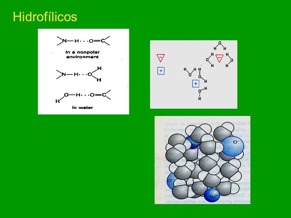 Propriedades da molécula da água biologicamente importantes