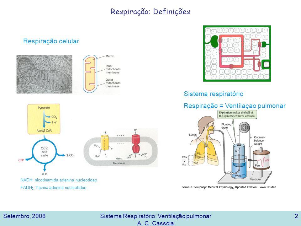 Setembro, 2008Sistema Respiratório: Ventilação pulmonar A. C. Cassola 2 Respiração: Definições NADH: nIcotinamida adenina nucleotideo FADH 2 : flavina
