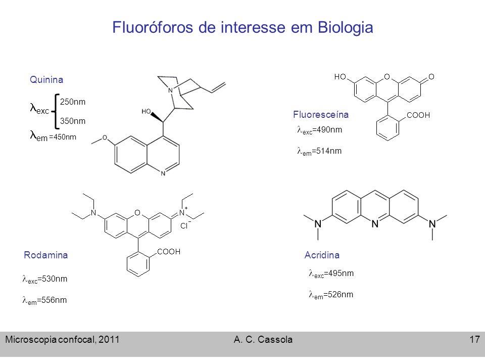 Microscopia confocal, 2011A. C. Cassola17 Fluoróforos de interesse em Biologia Fluoresceína Rodamina Quinina Acridina exc 250nm 350nm em =450nm exc =5